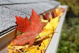 Gutter full of Leaves